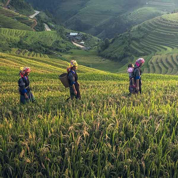 nachhaltig reisen in Asien